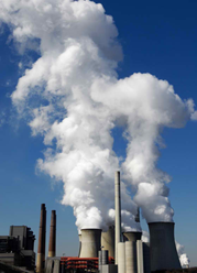 environmental toxins that potentially cause ADHD