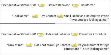 discrete trial training diagram