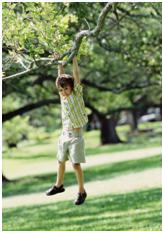 child hanging on a branch engaging in sensory seeking behavior
