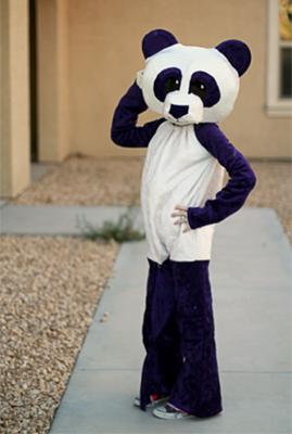 purple panda fashion pose!