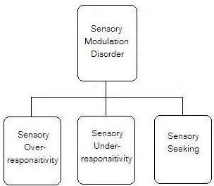 sensory modulation disorder diagram explaining different subtypes